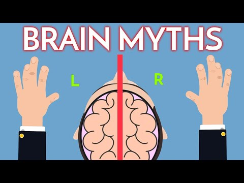 7 Brain Myths You Thought Were True