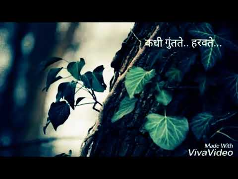 Beautiful marathi whatsapp status | man udhan varyache |