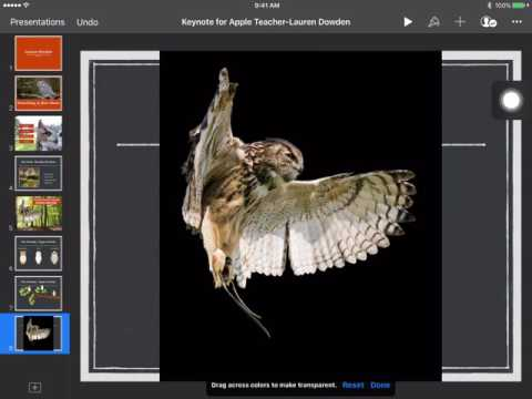 How to use Instant Alpha to Remove a Background in Keynote App on iPad