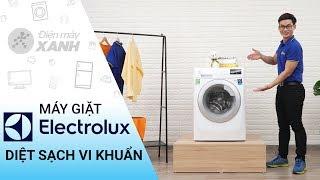 Máy giặt Electrolux Inverter 8 kg EWF10844 - Diệt sạch khuẩn bảo vệ làn da | Điện máy XANH