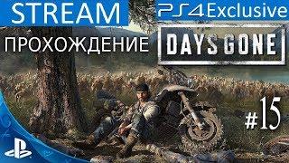 Ps 4 Days Gone  ЖИЗНЬ ПОСЛЕ ПРОХОЖДЕНИЕ ЭКСКЛЮЗИВА  Stream  15