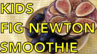 Kids Fig Newton Smoothie