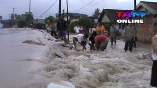 Download Video Kampung Bintang Banjir MP3 3GP MP4