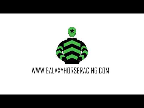 Join The Team | Galaxy Horse Racing Syndicate