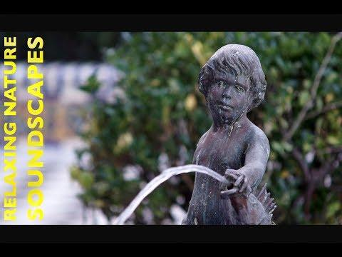 Relaxing Soundscape Water Flowing Fountain Apodaca