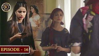 GuloGulzar  Episode 16  Top Pakistani Drama