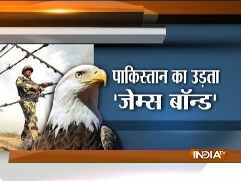 Spy falcon with transmitter found in Sriganganagar, Rajasthan