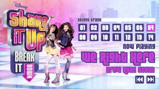 """Shake It Up: Break It Down"" - Album Sampler"
