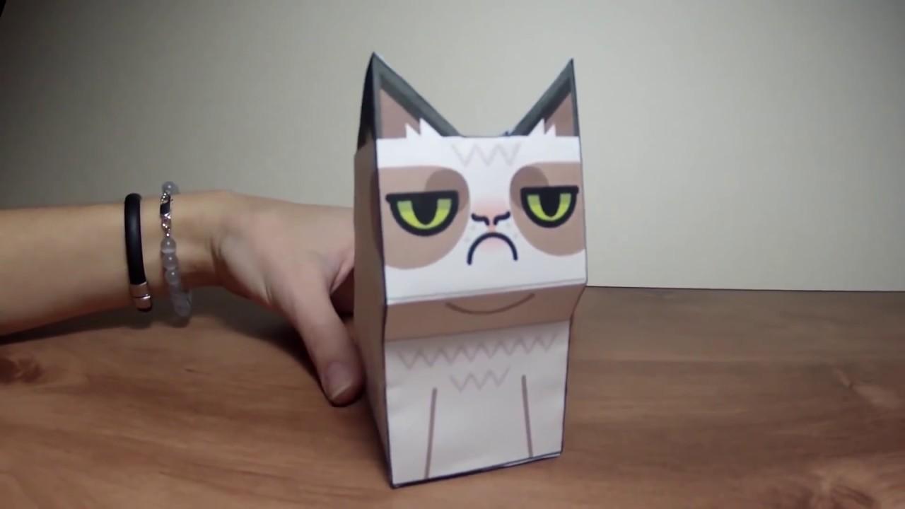 Grumpy Cat Diy Youtube