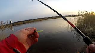 Первая весенняя рыбалка в 2021 году на микроджиг с берега