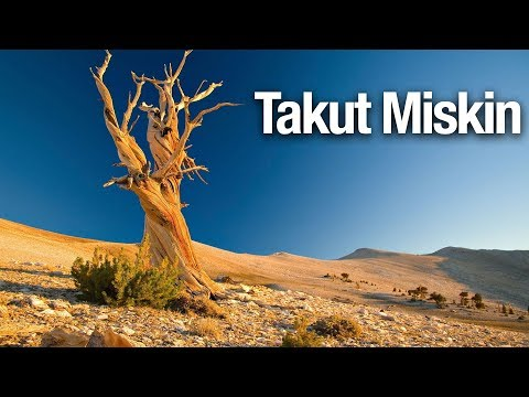 Takut Miskin - Ustadz Abdullah Taslim, MA