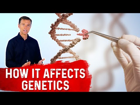 How Fasting Influences Your Genes