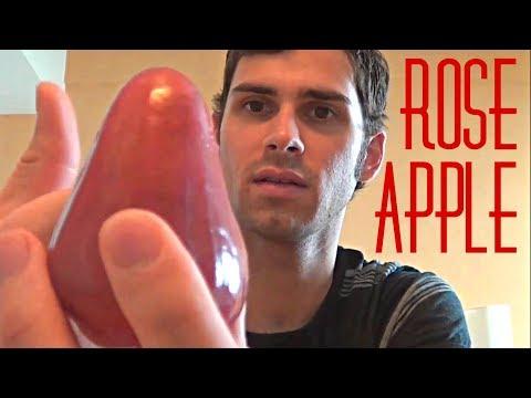 Rose Apple Review - Weird Fruit Explorer : Ep. 4