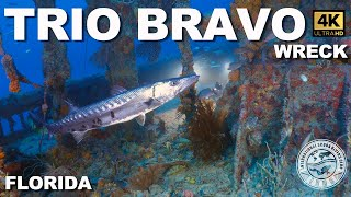 Tec #Wreck Diving: Trio Bravo Tug (Fort Lauderdale, Florida)