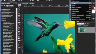 Уроки Corel PaintShop Photo Pro: «Вывод  макроса»