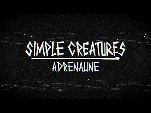 Cole Selleck - Simple Creatures - Adrenaline