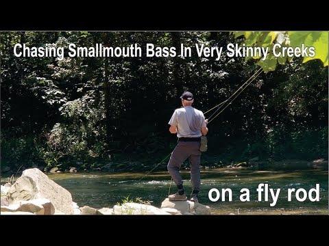 Catch Smallmouth Bass In Small Creeks