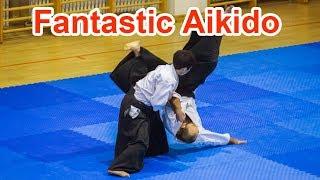 Fantastic Aikido - Shirakawa Ryuji