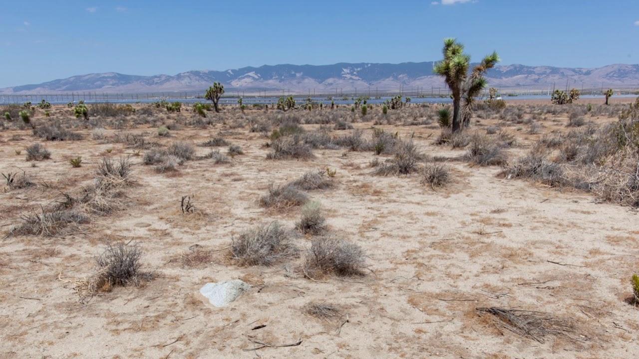 5 Acres of California Desert in Kern
