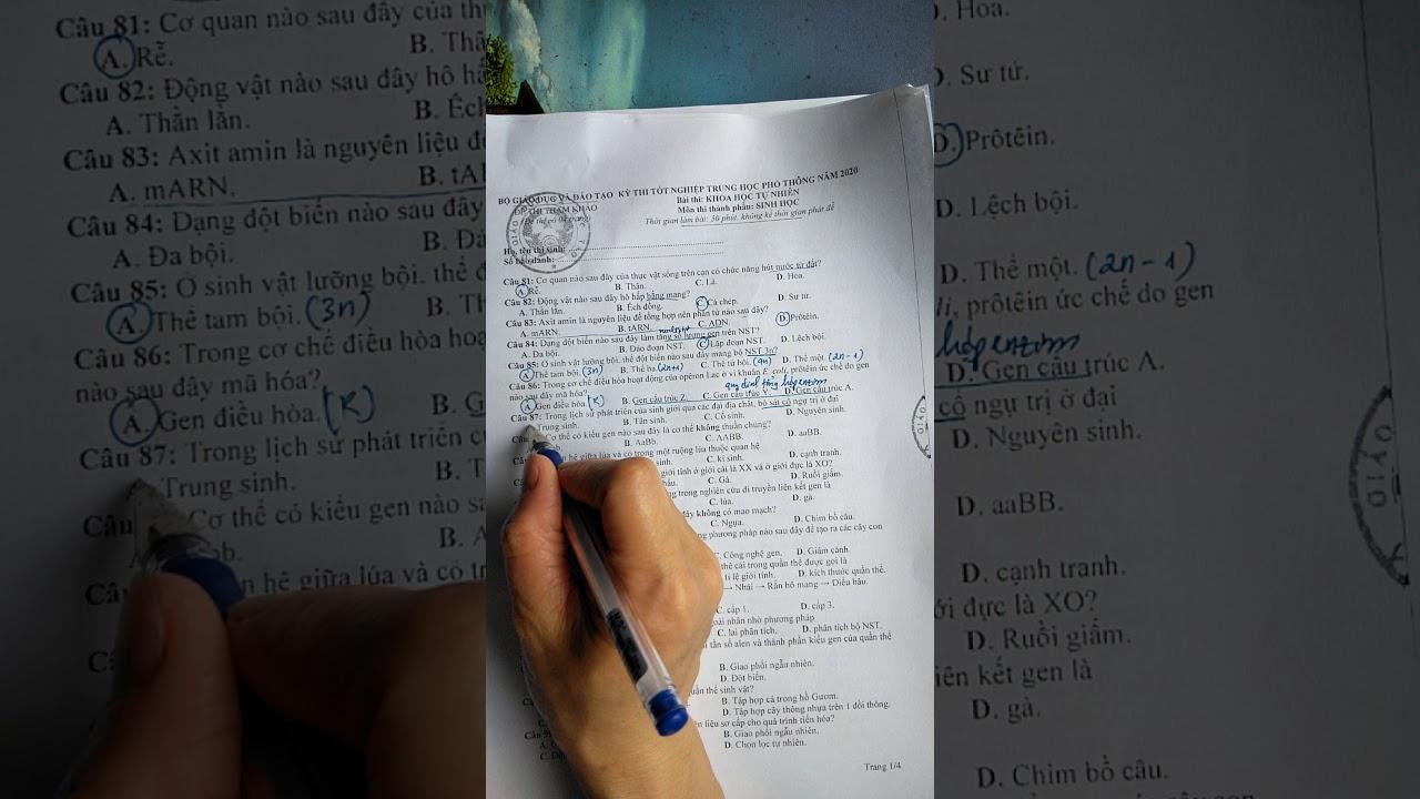 Hướng dẫn giải đề thi tham khảo tốt nghiệp THPT môn sinh học năm 2020 (1)