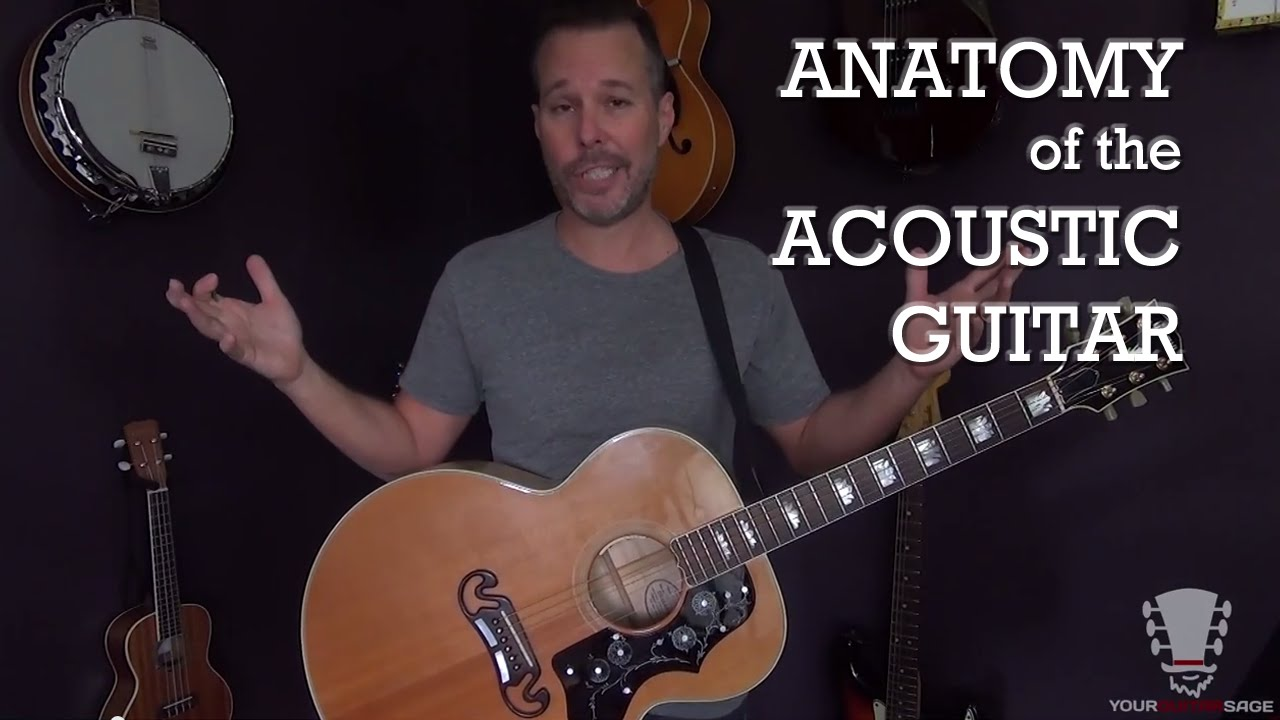 Anatomy Of The Acoustic Guitar Youtube
