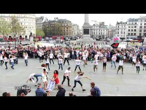 Love 146 Flash Mob  Little Bird