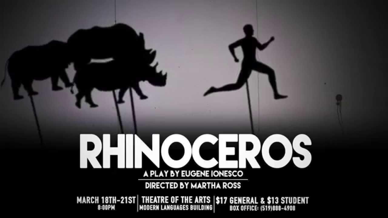 rhinoceros play