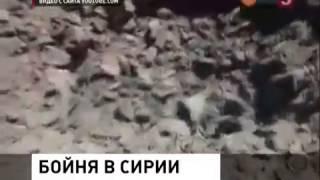Горячие новости.Массовая казнь в Сирии Среди жертв бесчеловечного преступления - дети (18+)