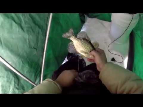 Ice Fishing Wolf Lake 1-9-14