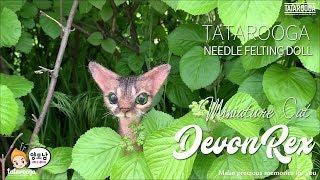Needle Felt cat tutorial - Persian Chinchilla - 양모펠트 데본렉스 고양이 만들기
