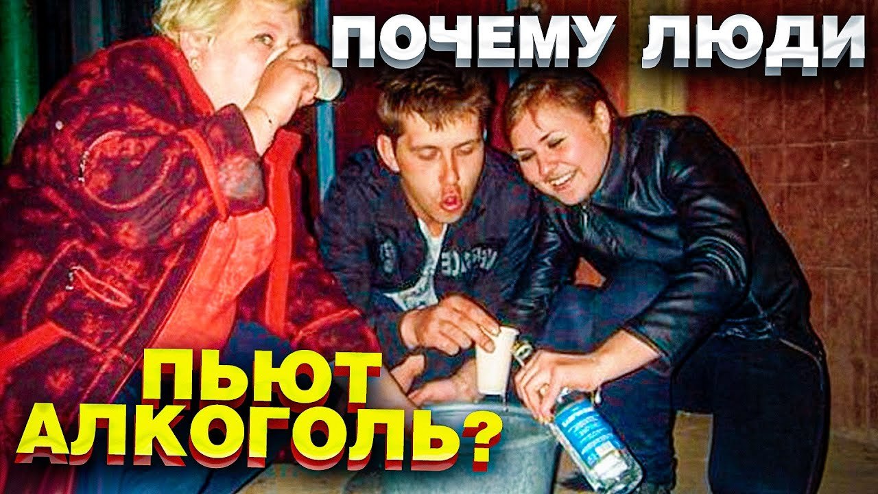 Почему люди пьют алкоголь? Выбор БЕЗ выбора / Блог Тихого