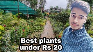 Roadside Biggest nursery visit , Plant names \u0026 prices , saw some rare \u0026 exotic Plants 😘😘