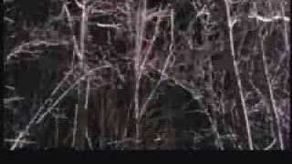 Wendigo Trailer (2001)