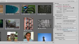 Aperture 3 Training: 1 - an Importing workflow