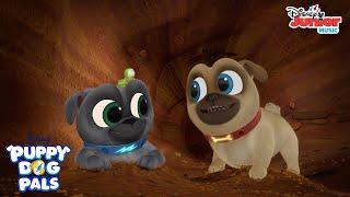 I Love Dirt Music Video | Puppy Dog Pals | Disney Junior