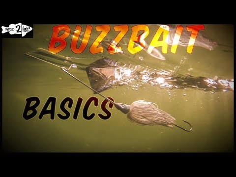 Buzzbait Fishing 101 With Denny Brauer