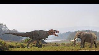 Dinosaur vs elephant
