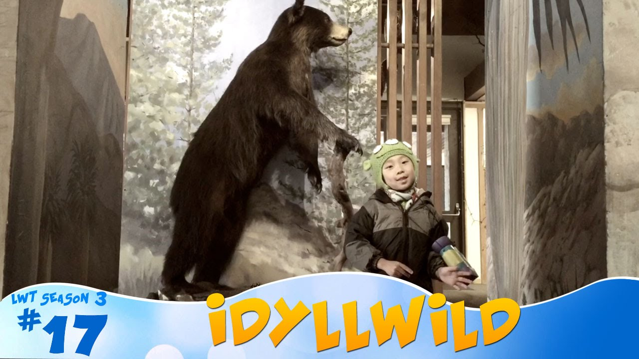 fun things to do in idyllwild, california: look who's traveling