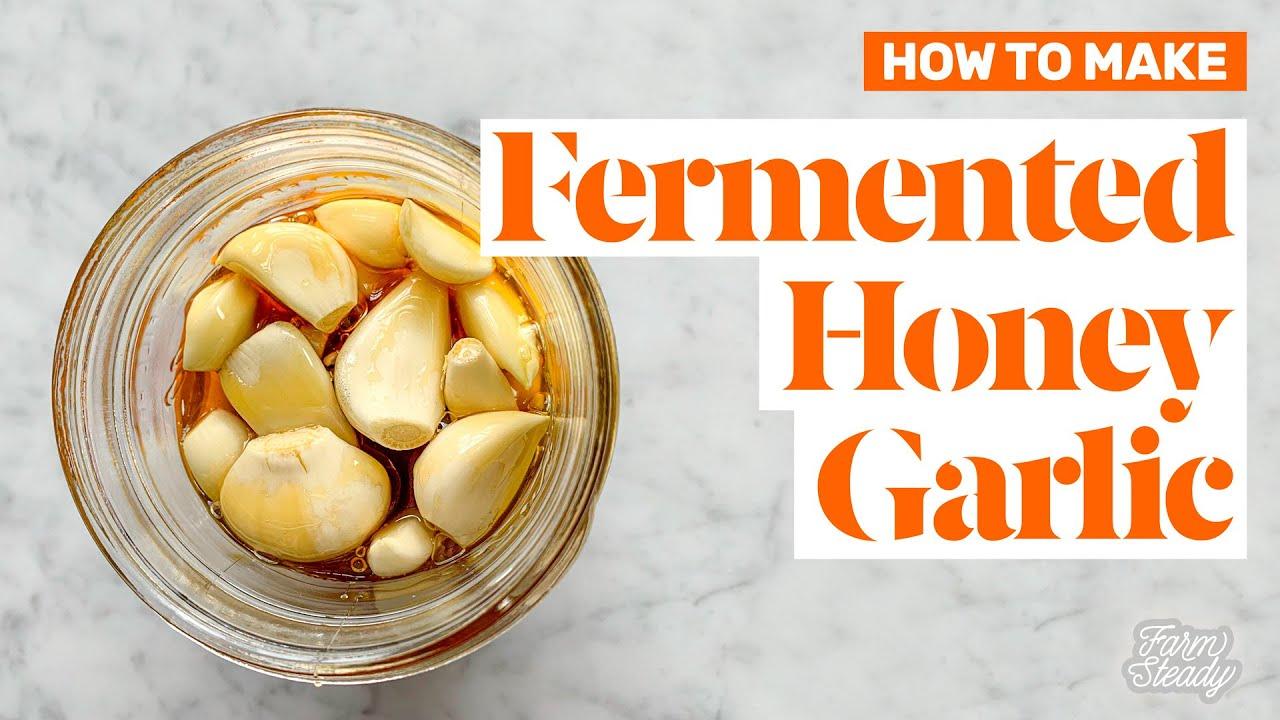 Recipe Fermented Honey Garlic Farmsteady