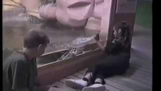 Приколы с животными за стеклом (((2 зоопарк.