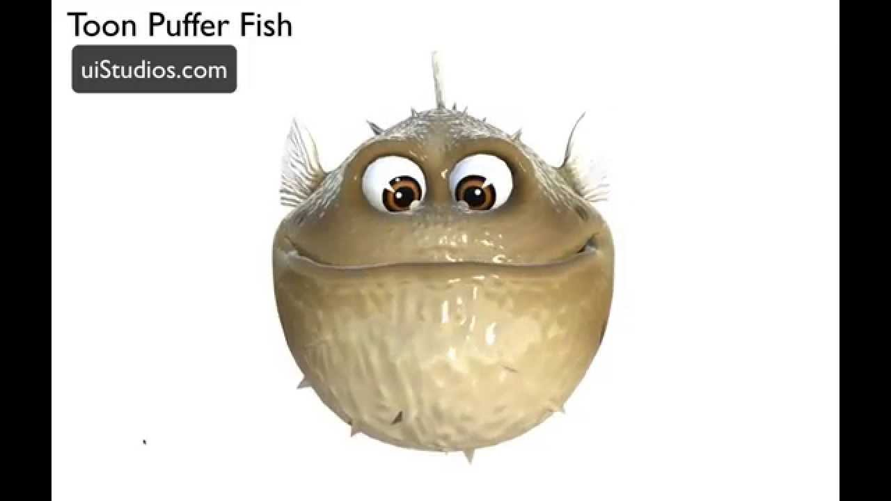 cartoon puffer fish unity 3d game model youtube