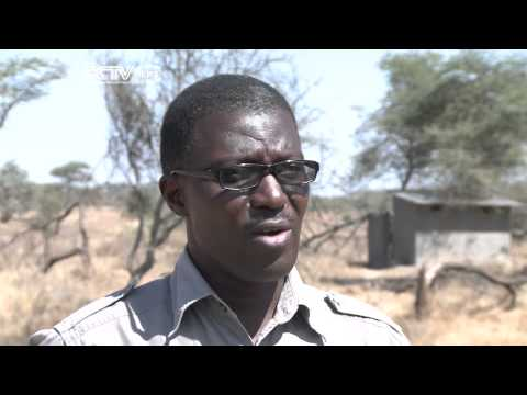 Eco Africa: Burning The Savannah