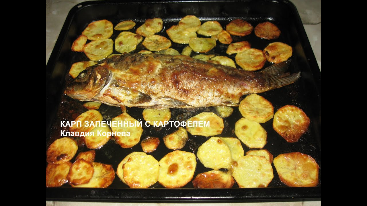 как приготовить сазана в духовке вкусно с картошкой
