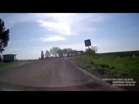 Drum spre Țipova cu Vulture