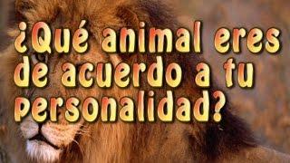 ¿Qué animal eres?