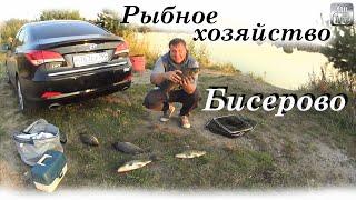 Рыбалка в Бисерово Карпы от 2 кг. Хороший платник в Московской области