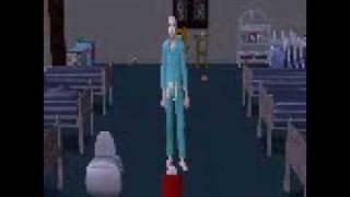 Odd Sims 2 Glitch