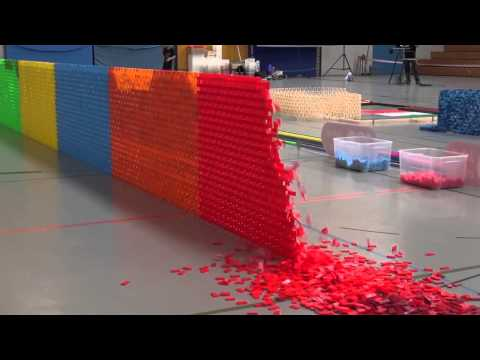 Guinness World Record Longest Domino Wall (30 Meters)