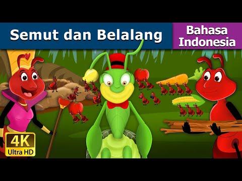 Semut dan Belalang - Dongeng bahasa Indonesia - Dongeng Anak Indonesia - Indonesian Fairy Tales
