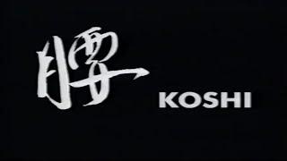 Эффективные техники Айкидо - Кошинаге (Effective Aikido techniques - Koshinage